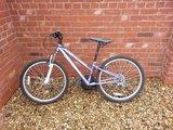 Girls mountain bike - £30 ono