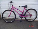 Gents Mountain Bike and Ladies Mountain Bike - £55 each