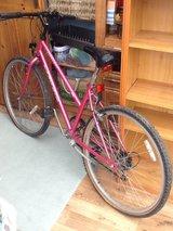 Mountain bike - women's (girls aged 14+) - £10 no offers