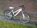 Raleigh Syncro Girls Bike - £55