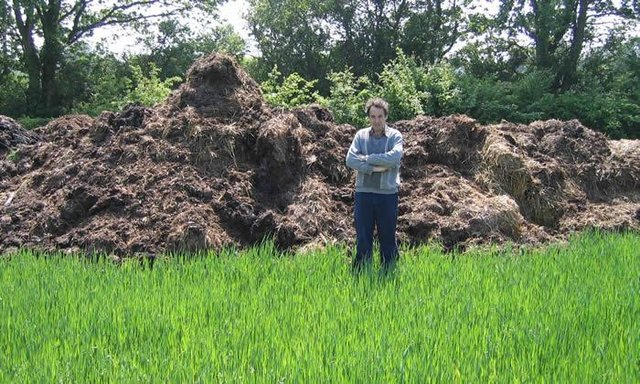 Horse Manure Well Rotted Organic For Sale In