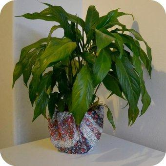 Plant pot covered in a colourful blue, red and white scarf
