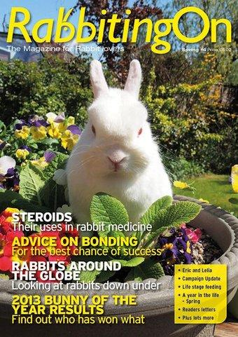 rabbiting on magazine