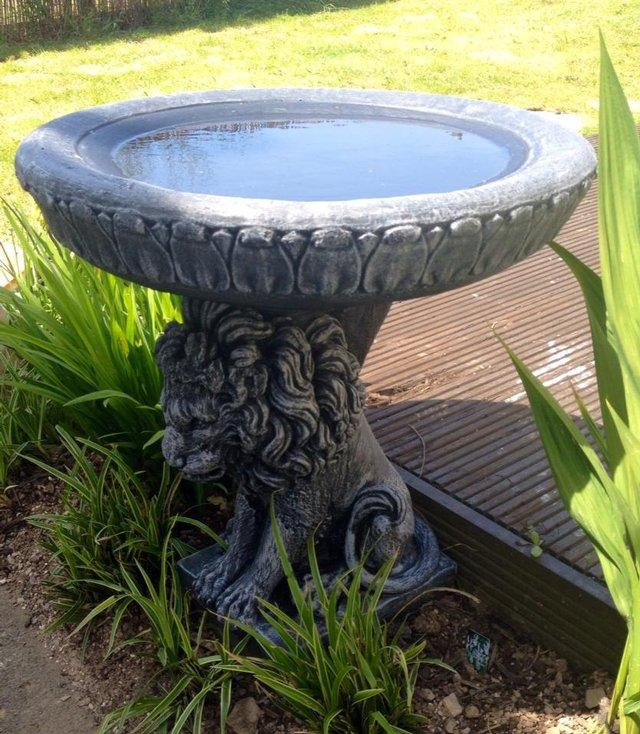 lion bird bath