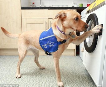 duffy using washing machine
