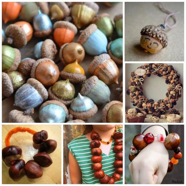 acorns and conkers