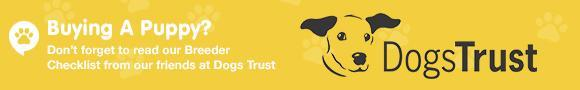 dogs trust breeder check list banner