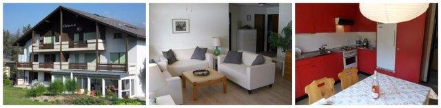Swiss Alps apartment
