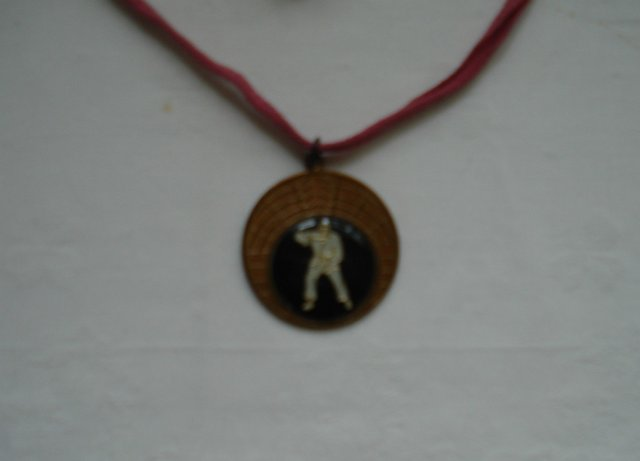 Preview of the first image of COLLECTORS ITEM - JUDO COIN MEDALLION / NECKLACE.