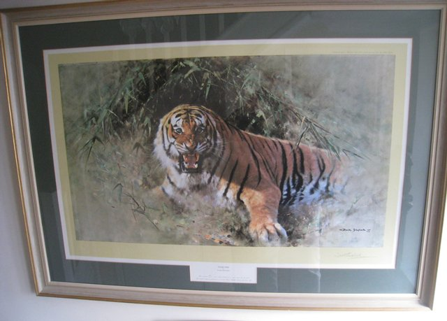 Preview of the first image of David Shepherd Limited Edition Print 'Tiger Fire'.