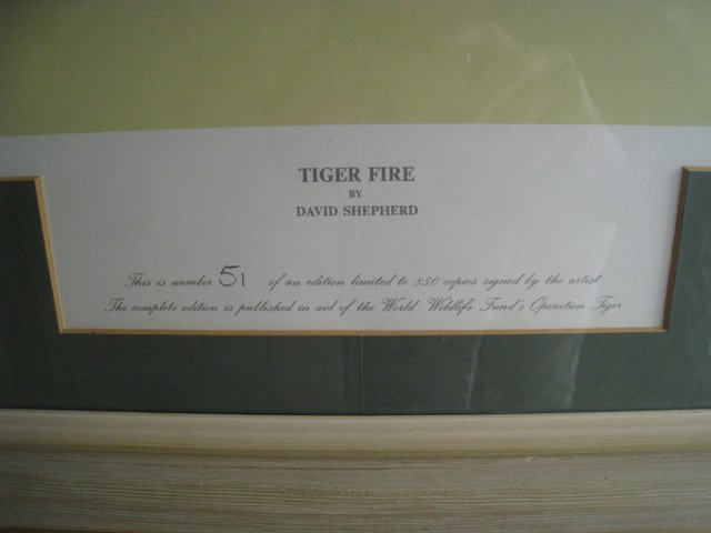 Image 2 of David Shepherd Limited Edition Print 'Tiger Fire'