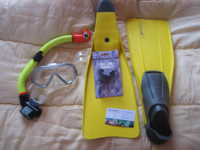Preview of the first image of Diving Fins, mask and new unused mouth piece for tank..