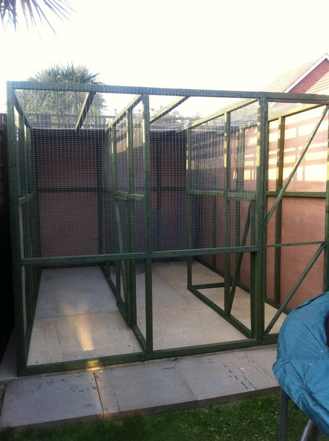 Image 2 of parrots and aviary birds wanted
