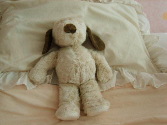 Preview of the first image of SNOOPY/CLINTONS CUDDLYS.