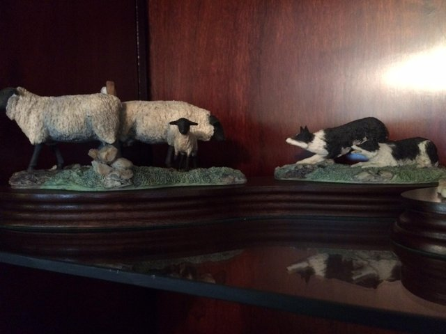 Preview of the first image of Border Fine Art - Suffolk Ewes and Collies.