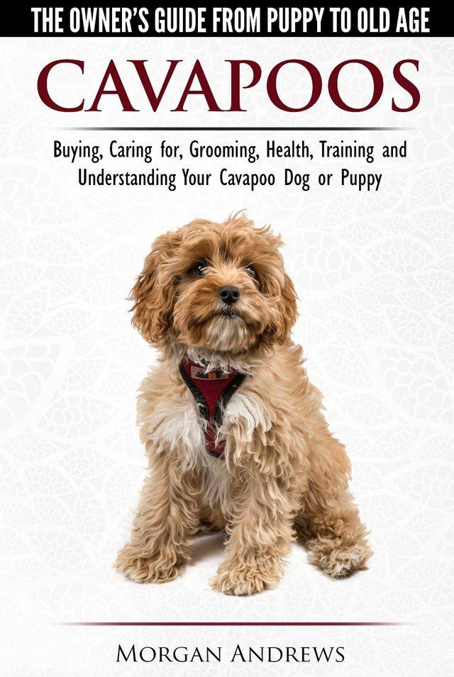Preview of the first image of Cavapoos - The No. 1 Best-Selling Owners Guide....