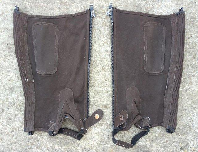 Image 2 of Brown Children's Riding Chaps