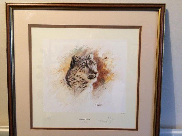 Image 8 of Pair of Limited Edition 'Big Cat' Prints by Tony Forrest
