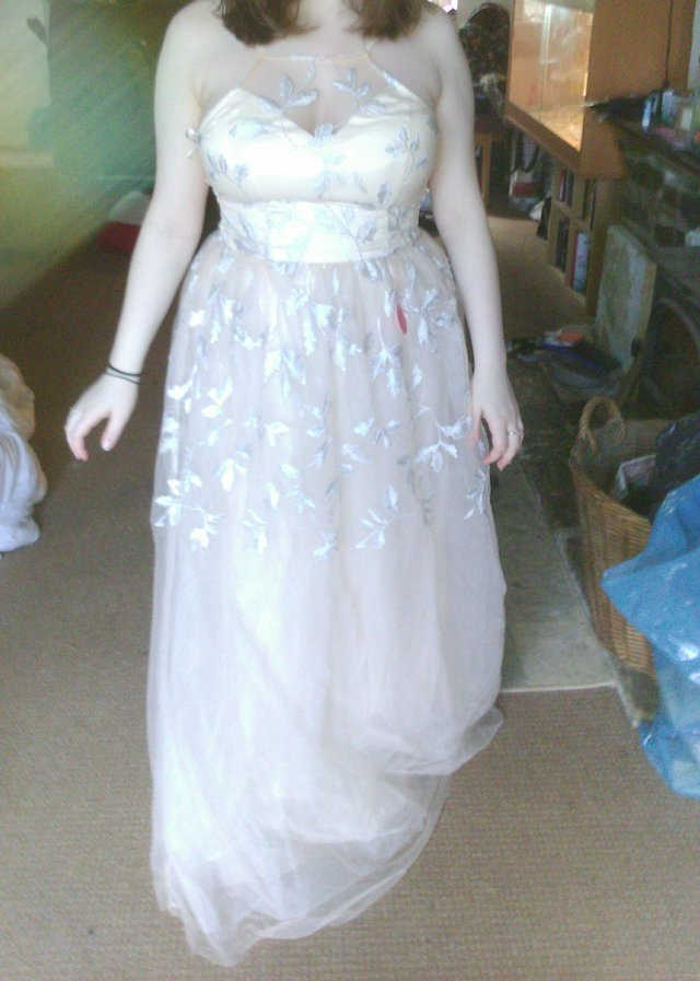Image 2 of Chi chi of London,prom or bridesmaid dress