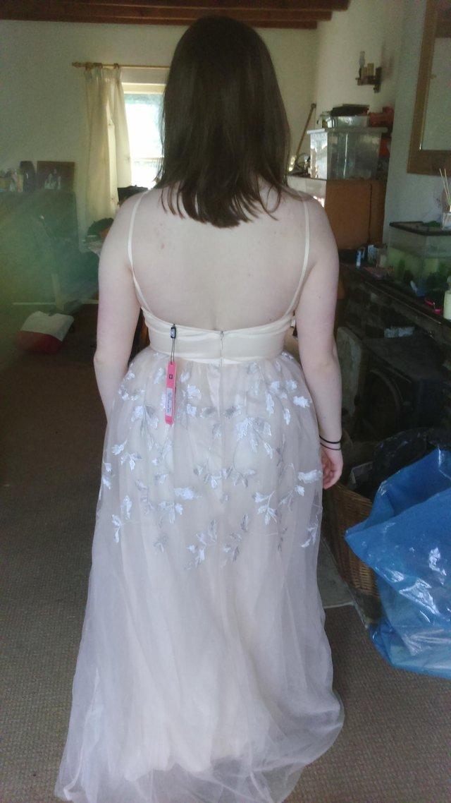 Image 3 of Chi chi of London,prom or bridesmaid dress