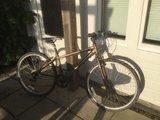 Apollo Urban/Mountain Bike - £45 ono