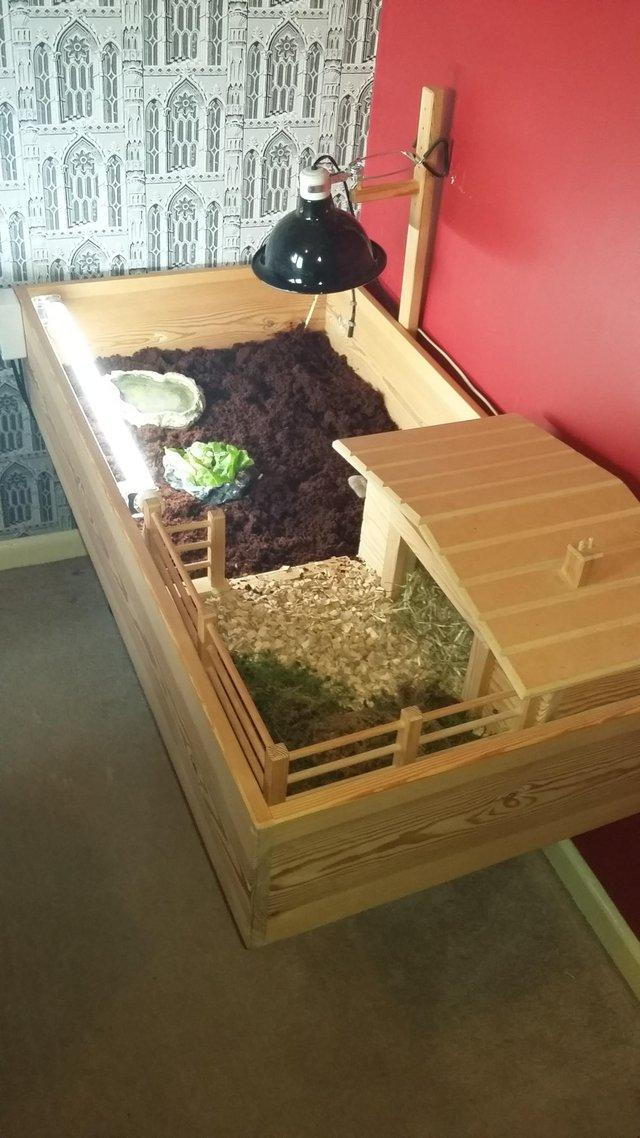 Tortoise table ranch full set up for swap & tortoise table - Second Hand Pet Accessories Buy and Sell in ...