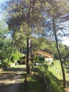 Image 10 of Mobile Homes to rent in Tuscany between Pisa and Florence
