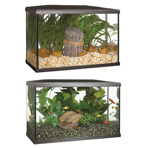 Image 2 of Fish Tanks Available At The Marp Centre