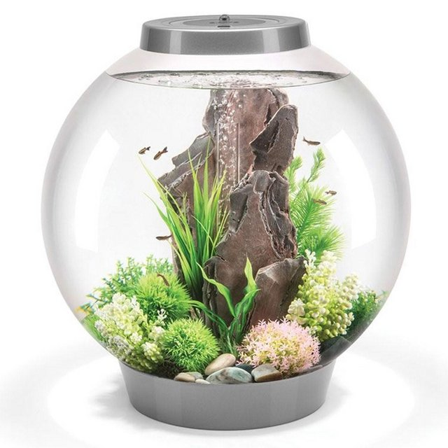 Image 3 of Fish Tanks Available At The Marp Centre