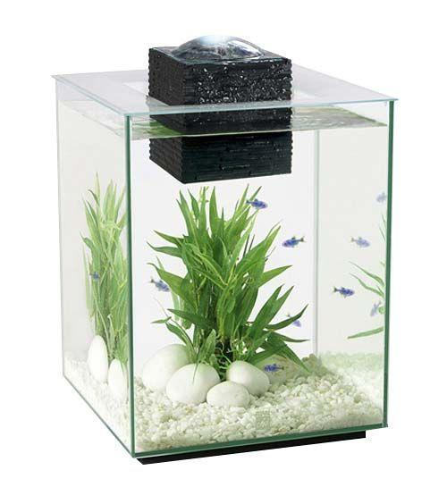 Image 5 of Fish Tanks Available At The Marp Centre