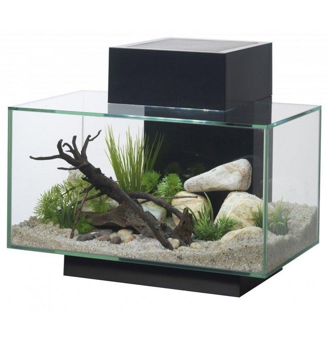 Image 6 of Fish Tanks Available At The Marp Centre