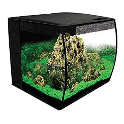 Image 7 of Fish Tanks Available At The Marp Centre