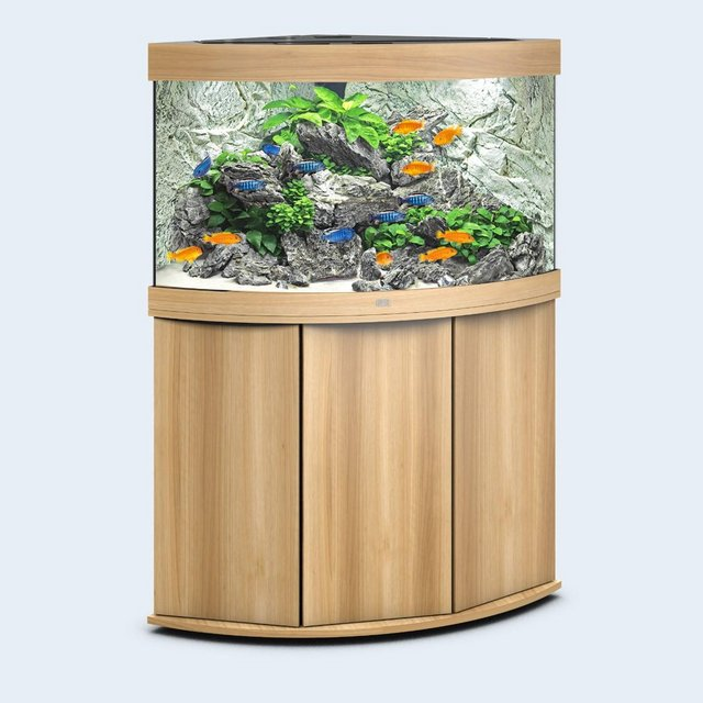 Image 10 of Fish Tanks Available At The Marp Centre