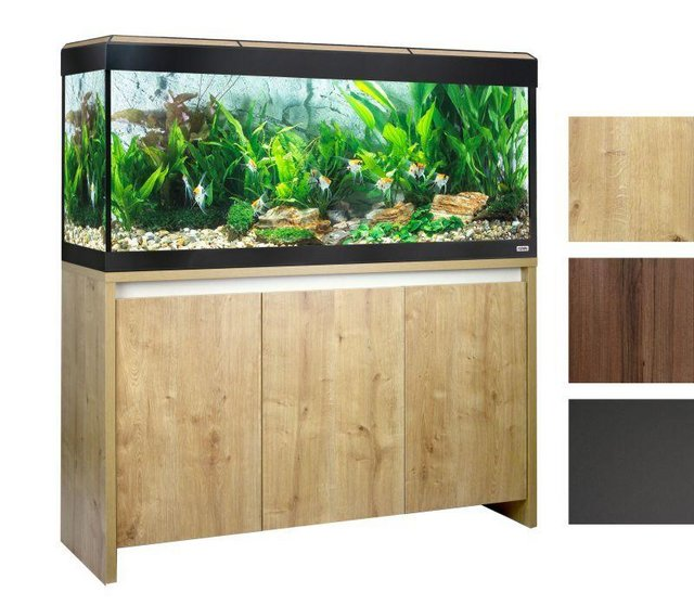 Image 12 of Fish Tanks Available At The Marp Centre