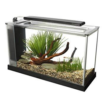 Image 13 of Fish Tanks Available At The Marp Centre