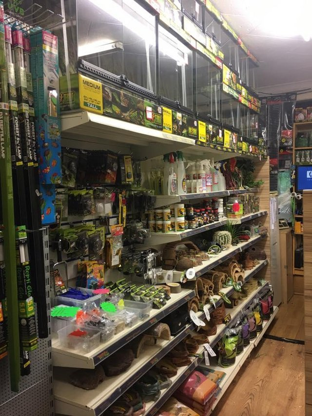 Image 8 of Warrington pets and exotics a fully stocked pet shop/store