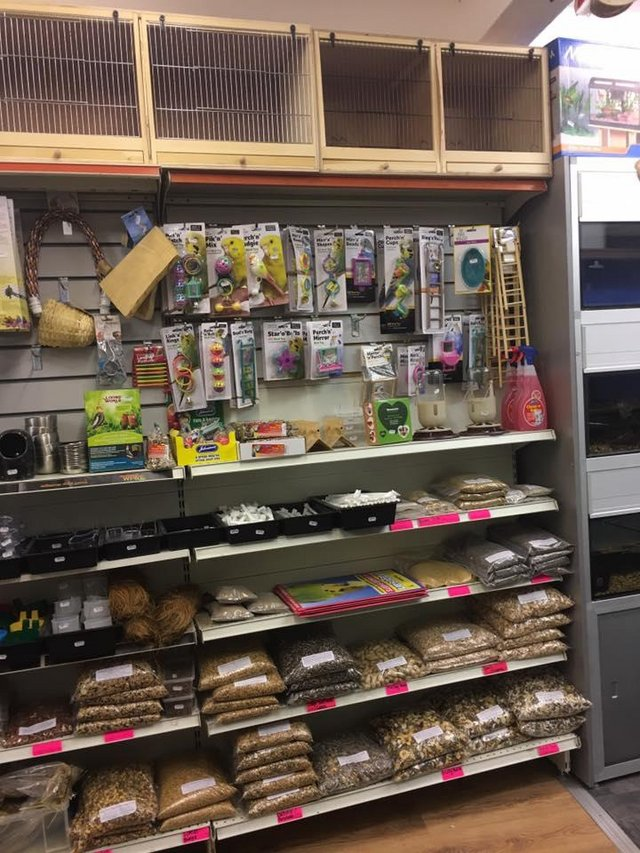 Image 13 of Warrington pets and exotics a fully stocked pet shop/store