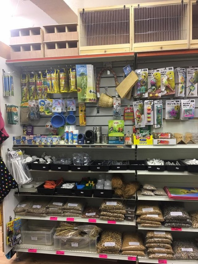 Image 14 of Warrington pets and exotics a fully stocked pet shop/store