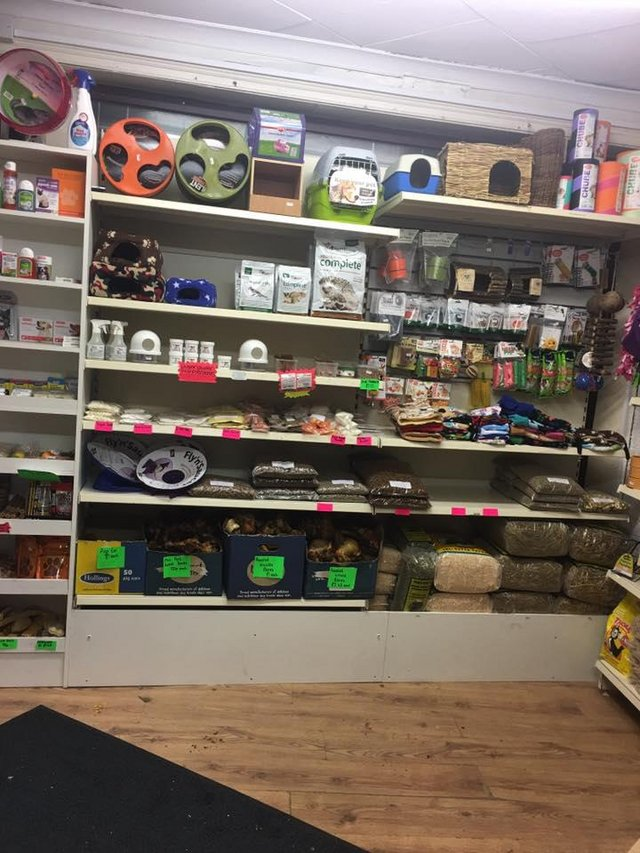Image 15 of Warrington pets and exotics a fully stocked pet shop/store