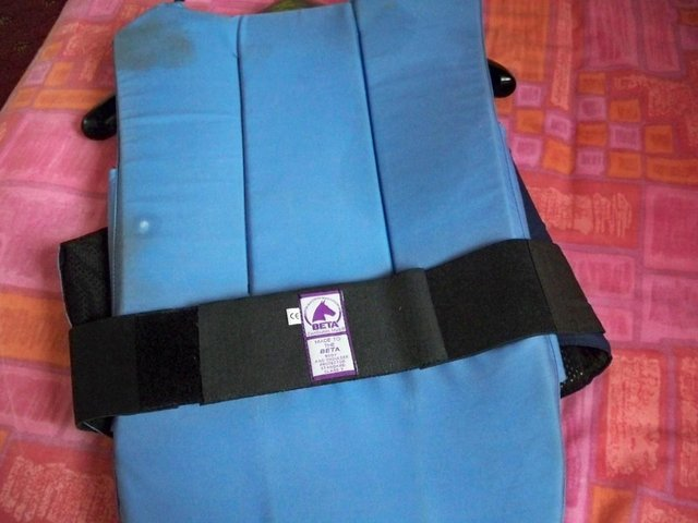 Image 2 of Body Protector