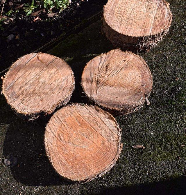 Image 2 of Rustic Log Slices for Candle holders ,Wedding Cake Stand etc
