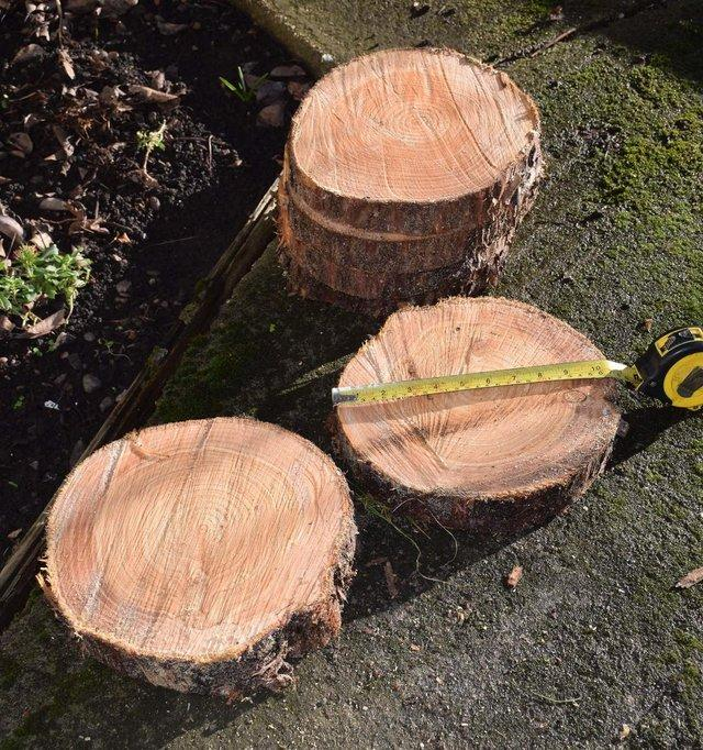 Image 3 of Rustic Log Slices for Candle holders ,Wedding Cake Stand etc