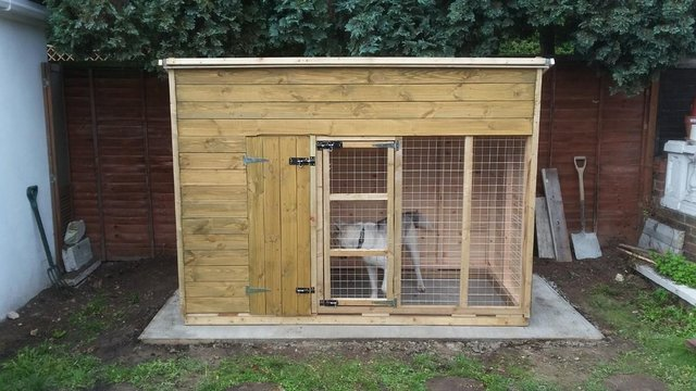 Preview of the first image of Hand made 8ft x 4ft x 5ft6'' dog kennel and run.