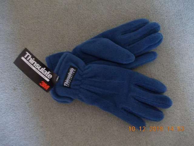 Preview of the first image of Women's Thinsulate Fleece Gloves - Blue (New).