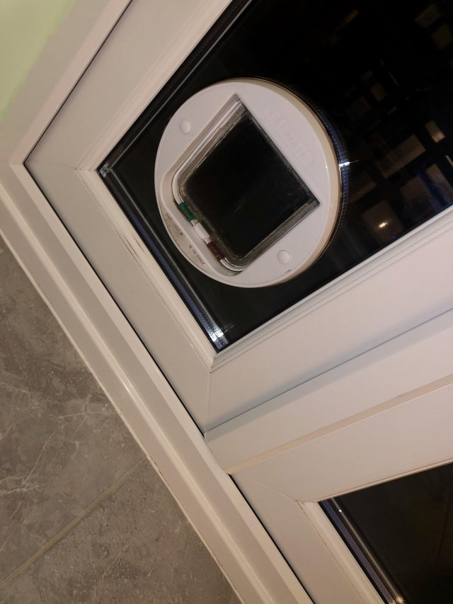 Image 2 of Glass Panel for French Door with Cat Flap