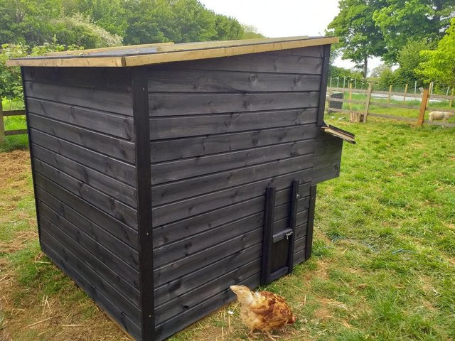 Image 2 of hand made 6' x 6' chicken coop