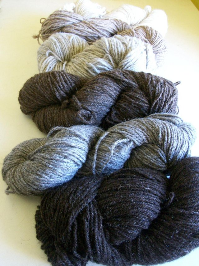Image 2 of 100% naturally coloured wool