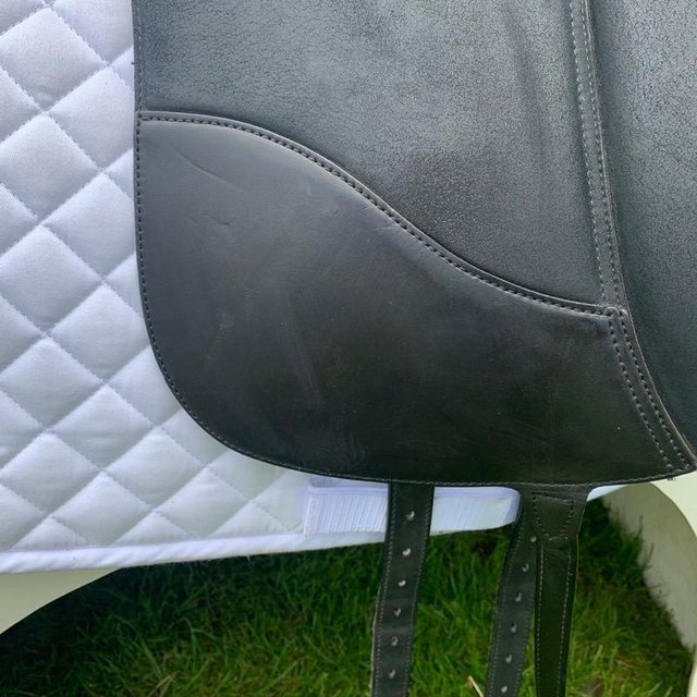 Image 8 of Wintec Isabell Werth 17.5 inch dressage saddle