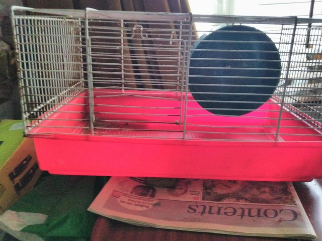 Image 2 of Hamster cage with wheel.