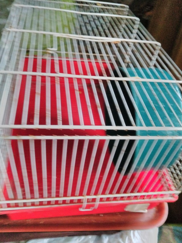 Image 2 of Hamster cage with wheel. Or any small pet